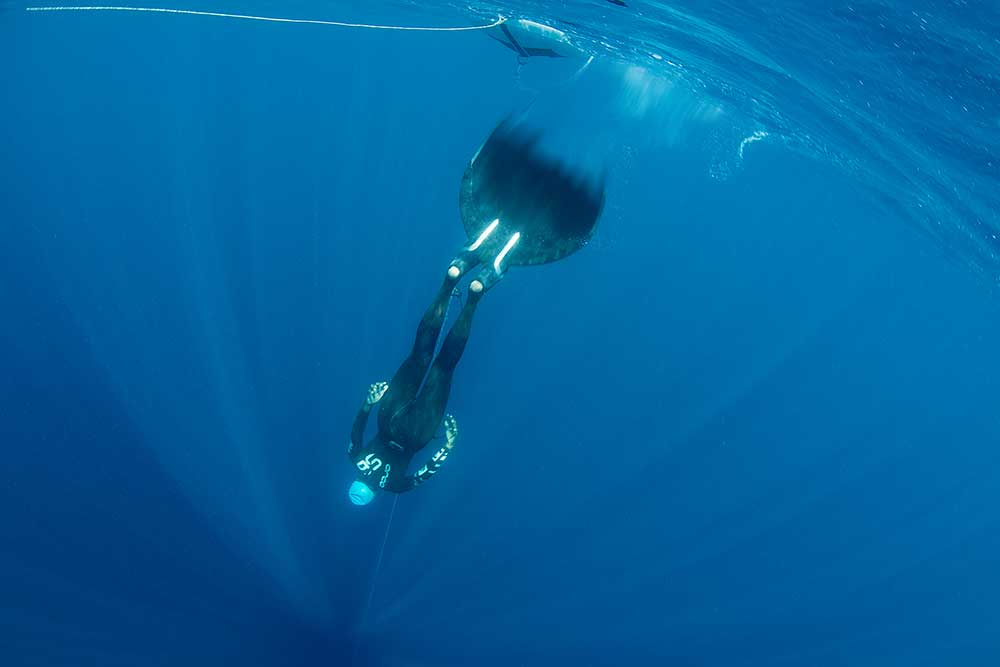 Freediving in Fiji and Diving Certification